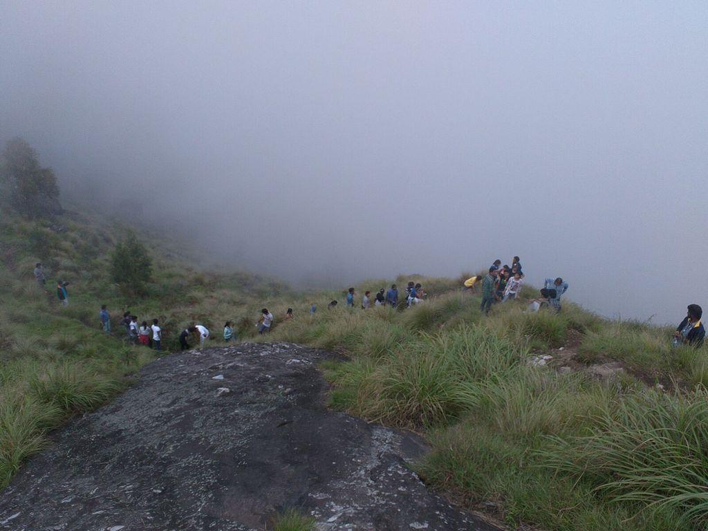 at kolukkumalai hills