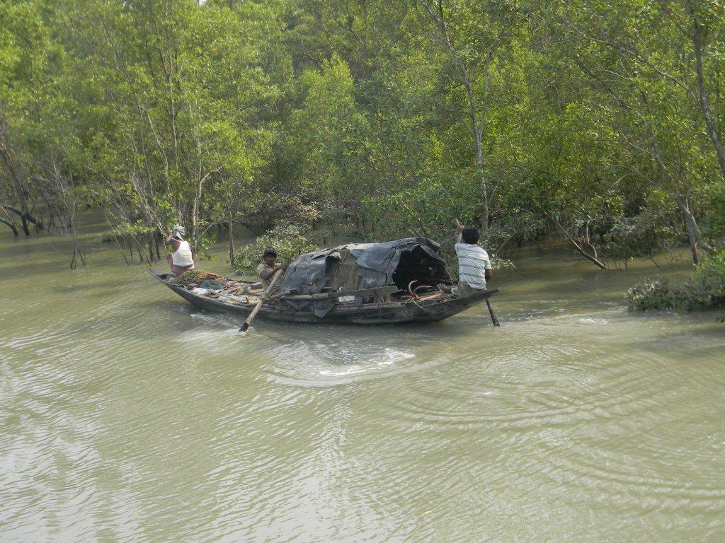 Fishermen of Sundarban