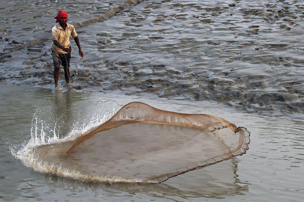 Fisherman at Sundarbans