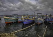 Fishing Boats by Lou Wilson.  Tags: Sri Lanka, fishing, boats.