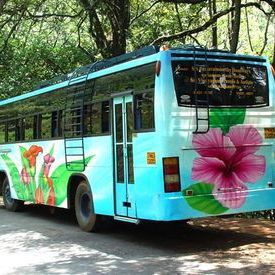 Floral painted Tamil Nadu tourbus1