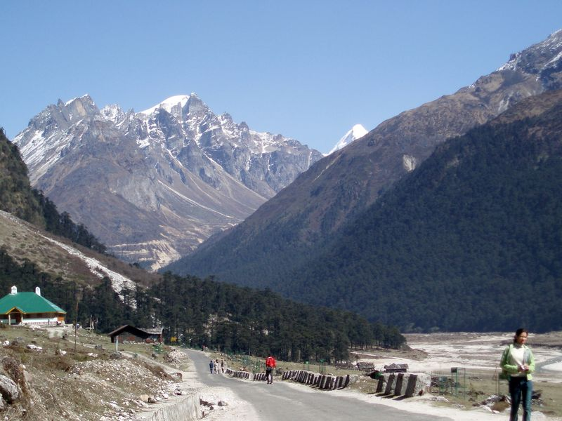 Yumthang Valley India Travel Forum