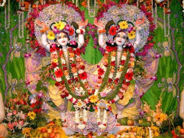 Gaura-Nitai in Krishna-Balaram Temple, Vrindavan