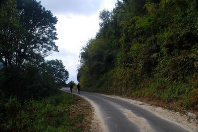 Road to Borong (South Sikkim)