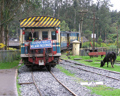 Nilgiri Blue Mountain steam train