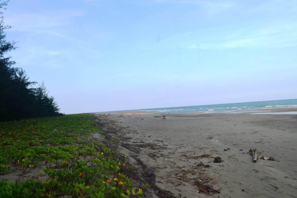 Dhaninalla Beach