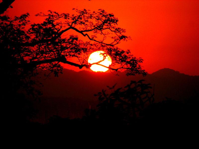 kaziranga - sunset