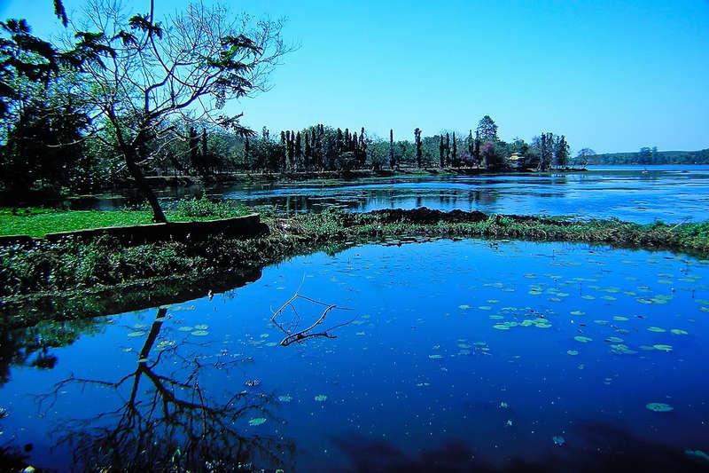 Lake at Nandankanan-Orissa