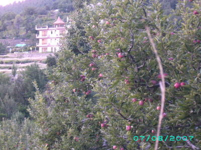 Dedicated to all Apple Lovers - Kalpa in August 2007
