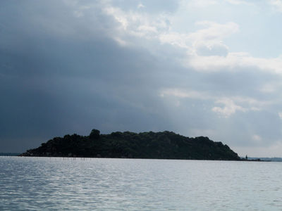 Bird island (Chilka)