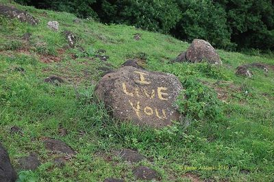 Proposal on Stone