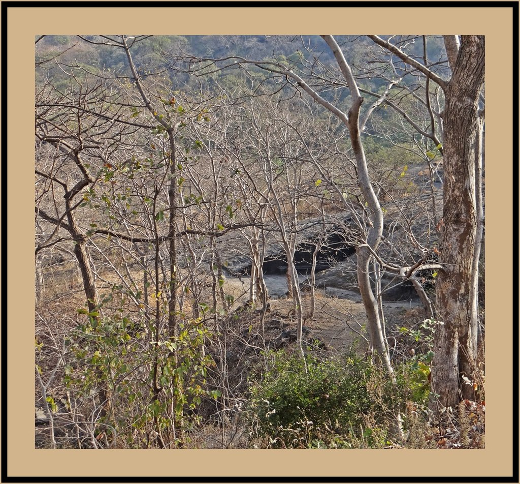 GLIMPSE OF KANHERI CAVES IN THE FORESTS OF SANJAY GANDHI NATIONAL PARK AT MUMBAI
