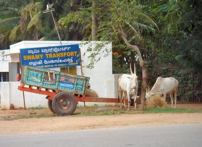 Swamy Transport - Karnataka