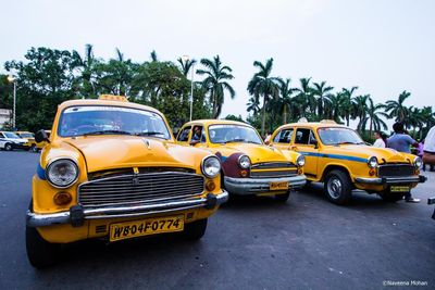 The Iconic Yellow Taxis of Calcutta!