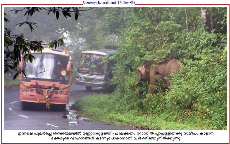 elephant attack - Page 2 - India Travel Forum   IndiaMike.com