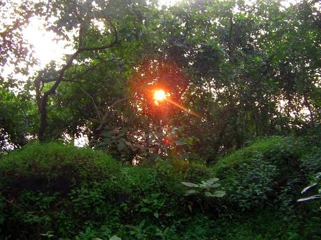 Name:  Sunrise Janani Temple.jpg