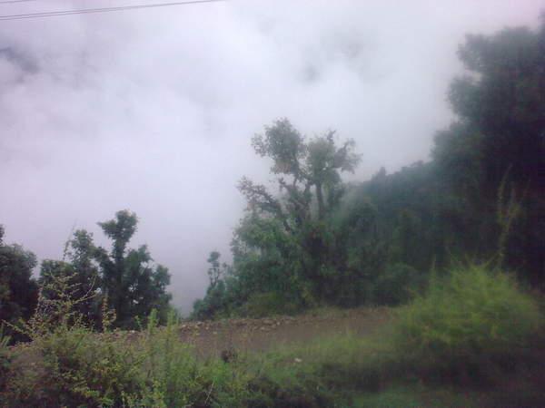 26062011208.jpg