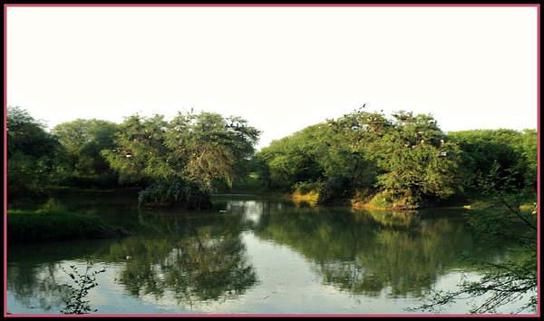Name:  Sanctuary Landscape.jpg Views: 3026 Size:  33.8 KB