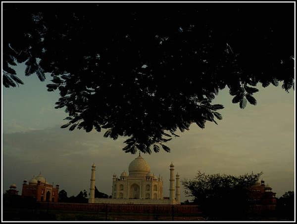 Name:  Taj - Mehtab Bagh3.jpg Views: 3723 Size:  27.4 KB