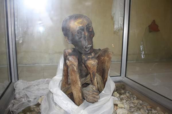 Name:  Mummy lama1.jpg Views: 5034 Size:  23.6 KB