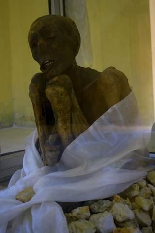 Name:  Mummy lama2.jpg Views: 2275 Size:  13.2 KB