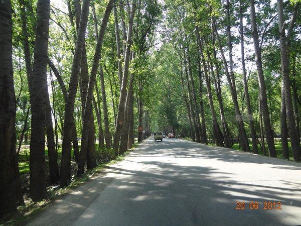 SRINAGAR ROAD.jpg