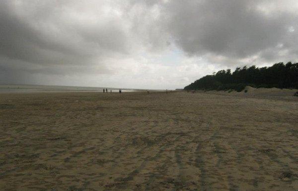 Name:  Talsari Sea Beach.jpg Views: 8446 Size:  31.3 KB