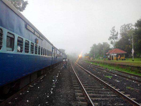 Misty Morning at Adavali.jpg