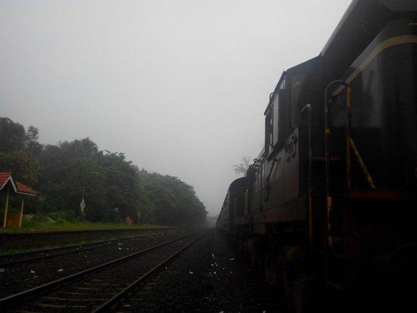 Still Misty at Sangameshwar.jpg