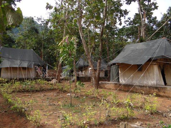 India Travel | Forum: Odisha orissa - Trip to kuldiha forest in orissa
