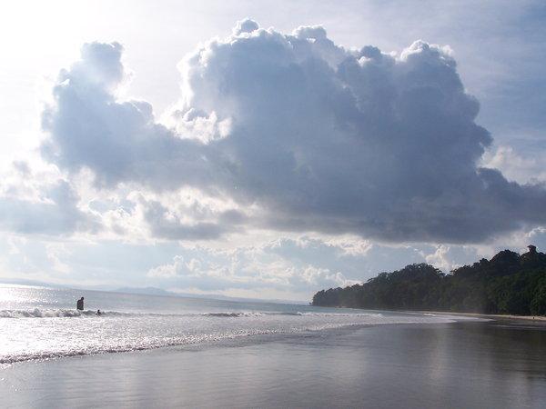 Name:  havlock beach.jpg Views: 962 Size:  35.6 KB