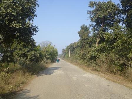 03. Way to Chandil Dam.JPG