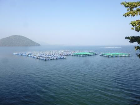 10. Chandil Dam.JPG