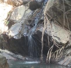 10. Dharagiri Falls.JPG