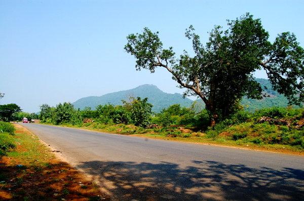 Name:  1 On the Way to Daringbadi from Berhampur.jpg Views: 5807 Size:  72.5 KB