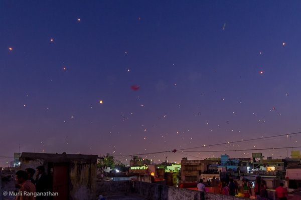 Name:  chinese lanterns-1.jpg
