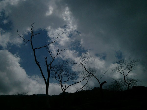 RainComing.jpg