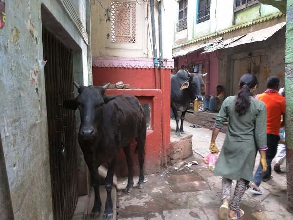 Varanasi1.jpg
