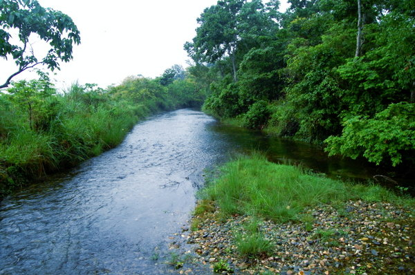 Name:  3 Chirakhawa River Flowing therough the park.jpg