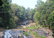 Abbey Water Falls  by vijkrish.  Tags: madikeri, water.