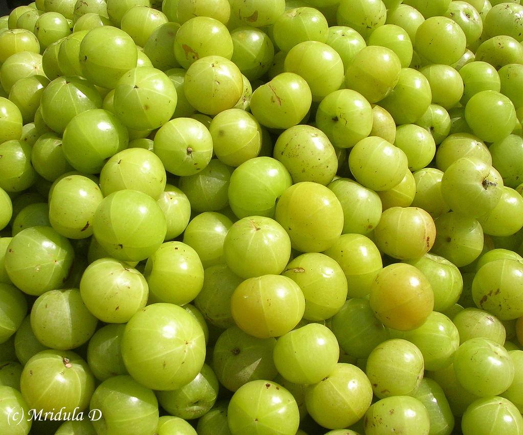 Amla (Indian Gooseberry)