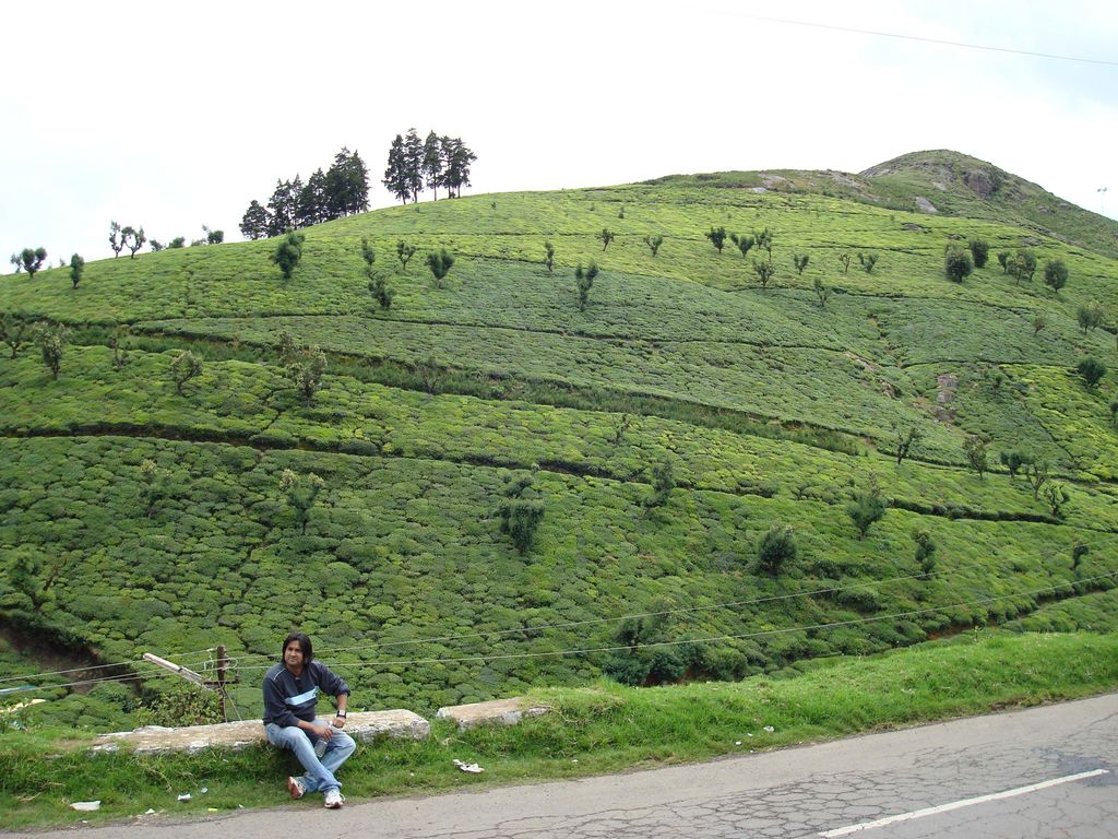 Ooty India  city photos gallery : ooty India Travel Forum | IndiaMike.com