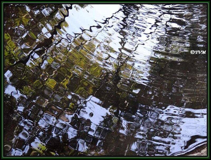 Ripples - in a almost dried up stream! Tungareshwar ...