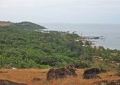 Chapora fort-Vagator-Little Vagator by Safari-Pena.  Tags: Goa, Vagator Beach, Landscapes, chapora, fort.