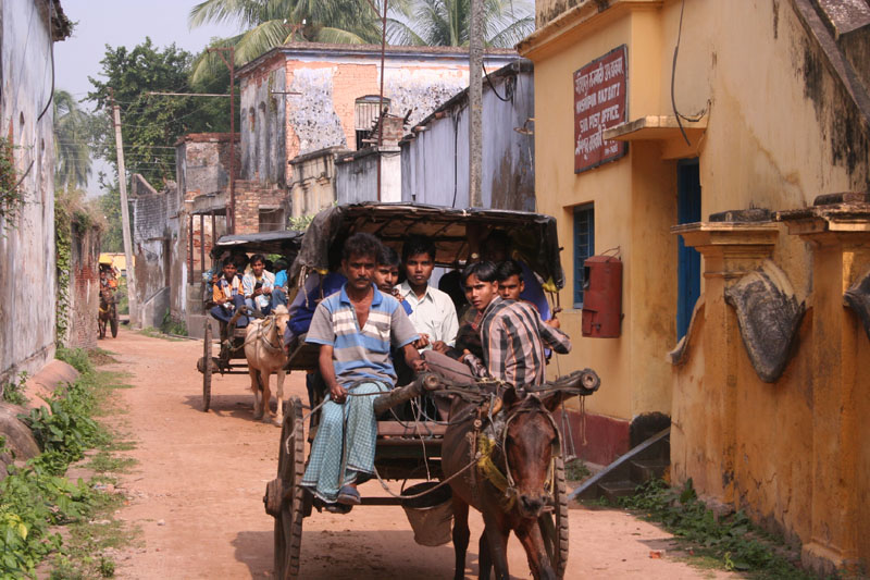 city life and rural life Life in rural areas is slower paced cities are more crowded and faster-paced while rural living is often more relaxed and  differences between city & country life.
