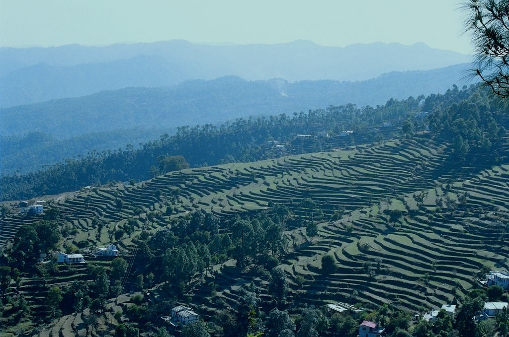 Terrace fields at kaparkhan india travel forum for Terrace india