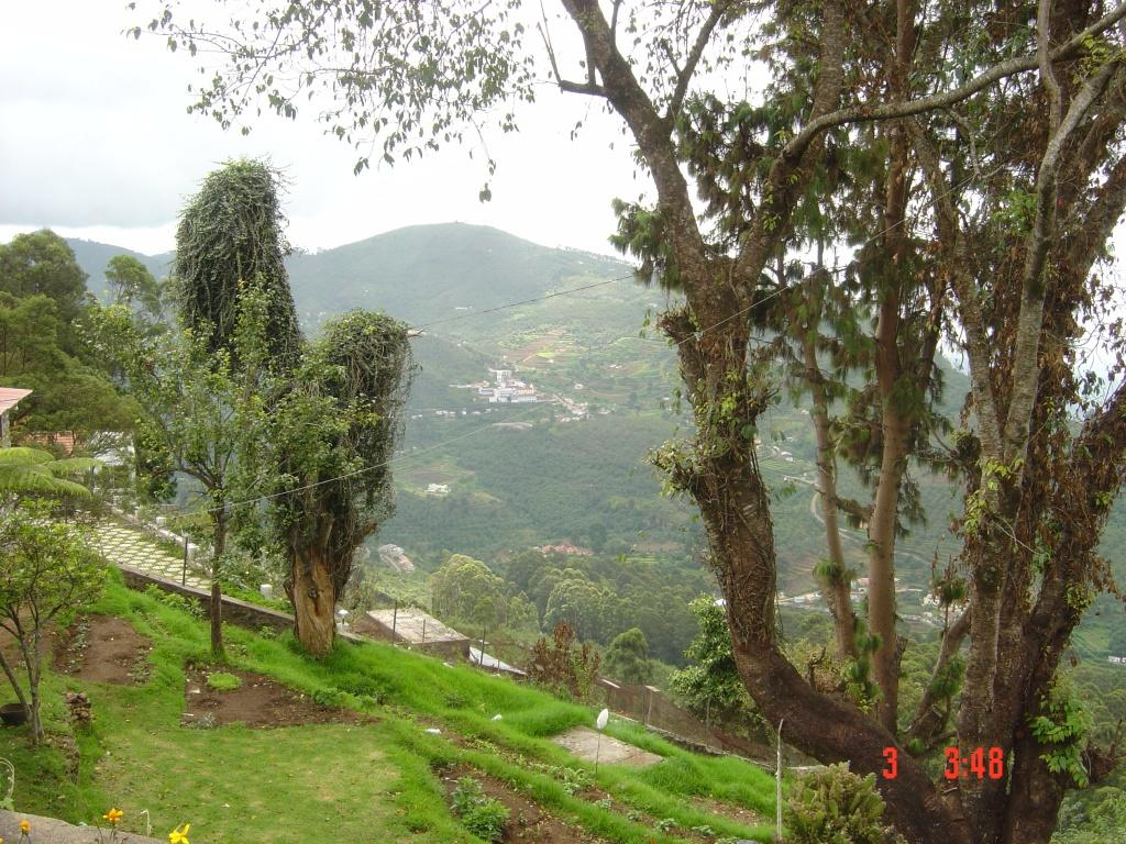 Cottage scenery for Kodaikanal cottage with swimming pool