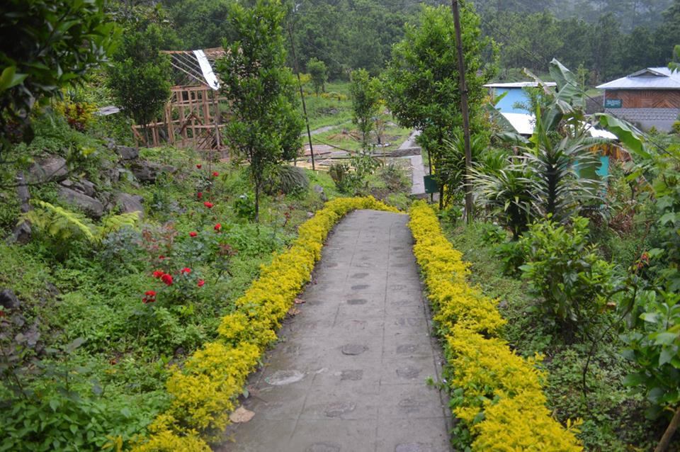 Orange Garden Pelling