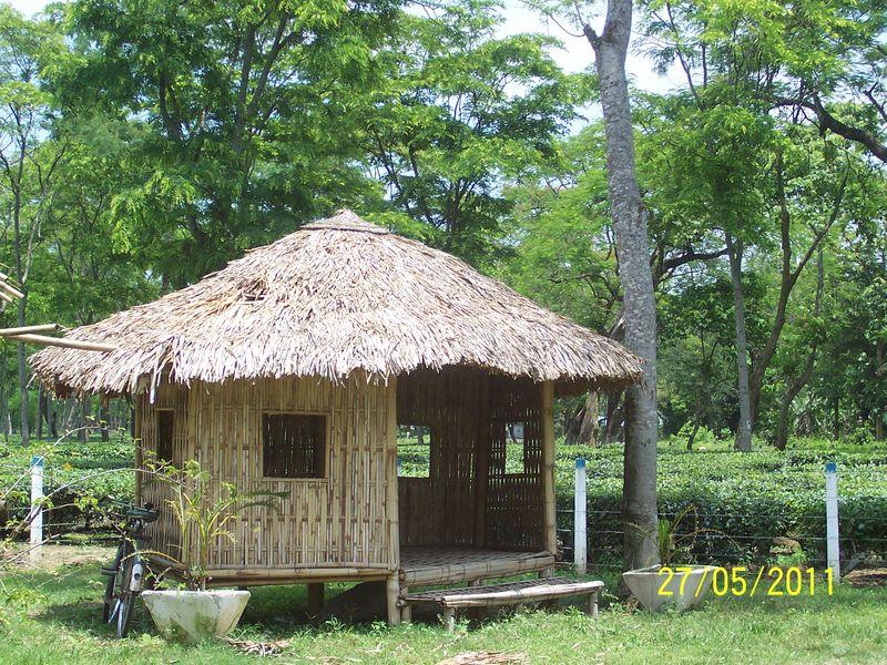 garden hut. Amalgamated Tea Garden Hut, Chabua Hut I