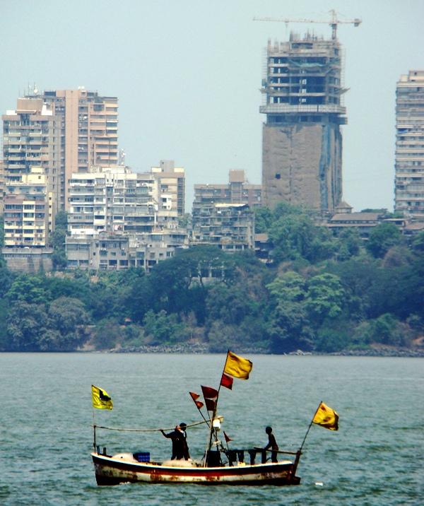 2 Bombay Jungles